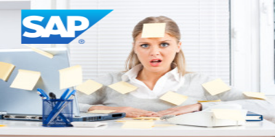 issue management in SAP projects